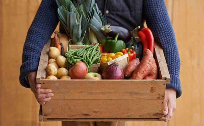 \旬の野菜を500名様に!/【モニター】有機・低農薬の…