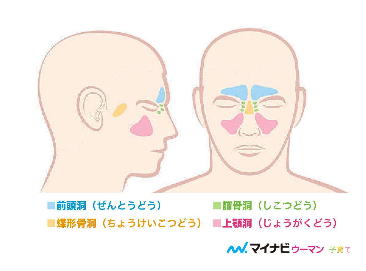 炎 副 症状 鼻腔