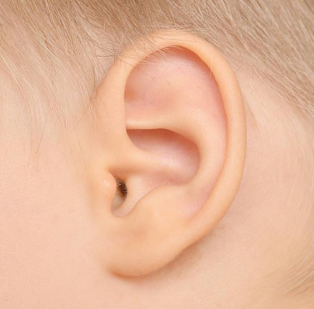 の 痛い 大人 耳 片方 下 が